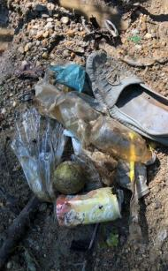 A leather loafer, plastic bottles, an aluminum can and a baseball found in the creek