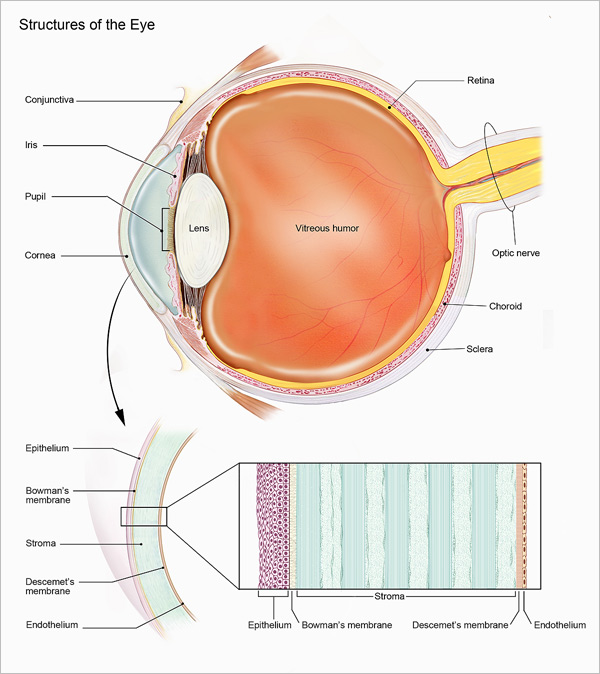 Corneal Cross-Linking for Keratoconus Approved!