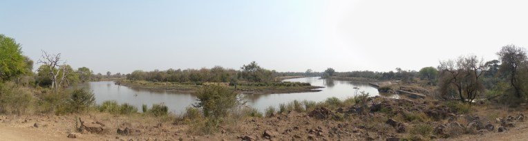 waterhole panorama