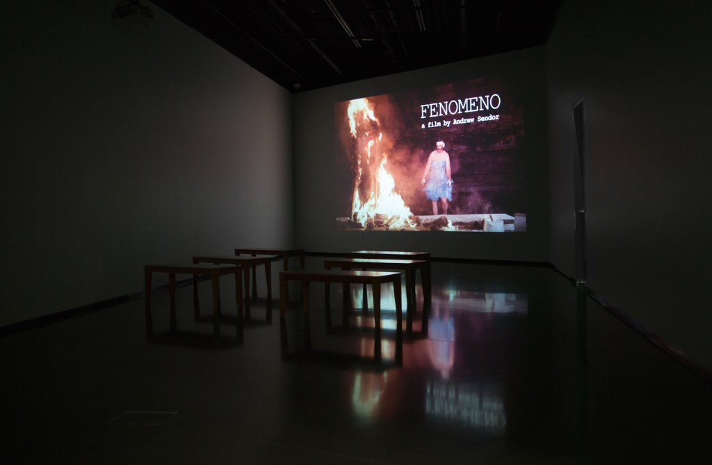 Andrew Sendor, FENOMENO (video, 2014) Installation view, Eli and Edythe Broad Art Museum, MSU, Image courtesy of the artist and Sperone Westwater, 2016