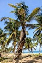 Agaja Beach - Lagos