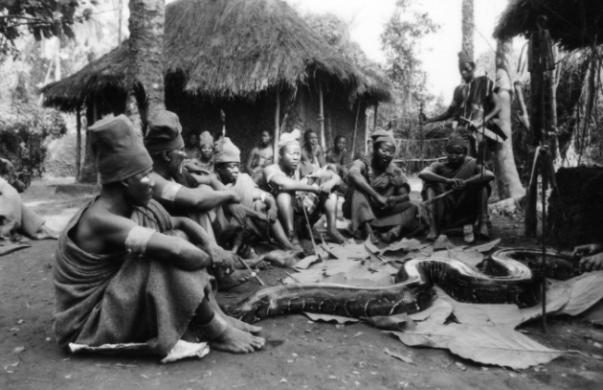 Screenplay, Nigeria 1970 - Stephen Goldblatt