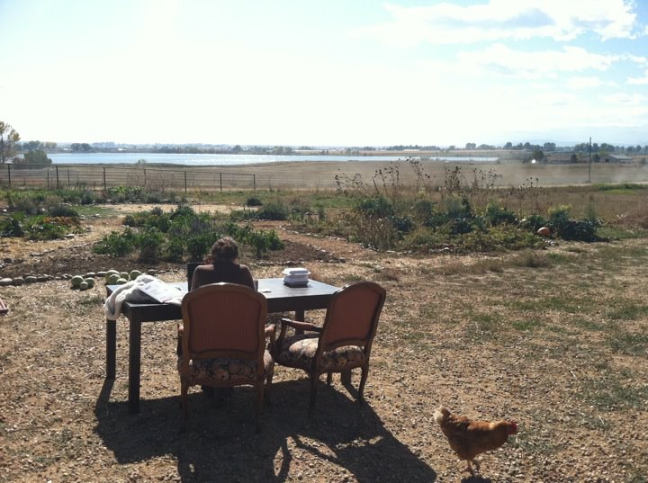 At my farm in Berthoud, CO – just another day at the farm…