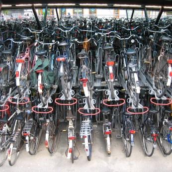 Bikes in Leiden
