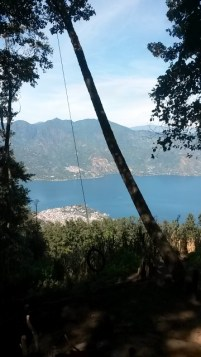 View from the swing