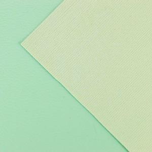 Simili cuir Vert Menthe © Eyrelles Tissus