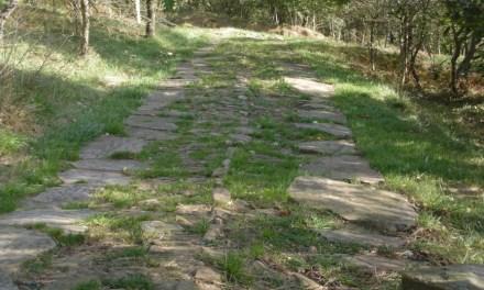 El camino de Santiago por Barakaldo