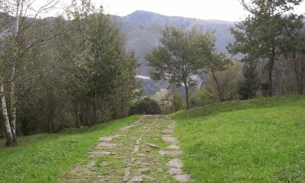 La Calzada Medieval de Santa Águeda