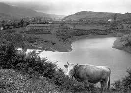 La alimentación de los mineros de Triano (Vizcaya): Cantinas y tiendas obligatorias, 1882-1899