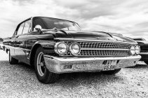 Ford Galaxie, SW
