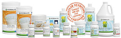 join herbalife now