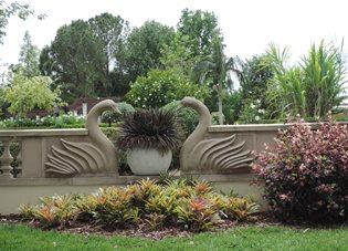 swan_garden