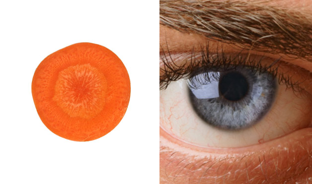 01-Carrot-Eye-Foods-That-Look-Like-Body-Parts-10
