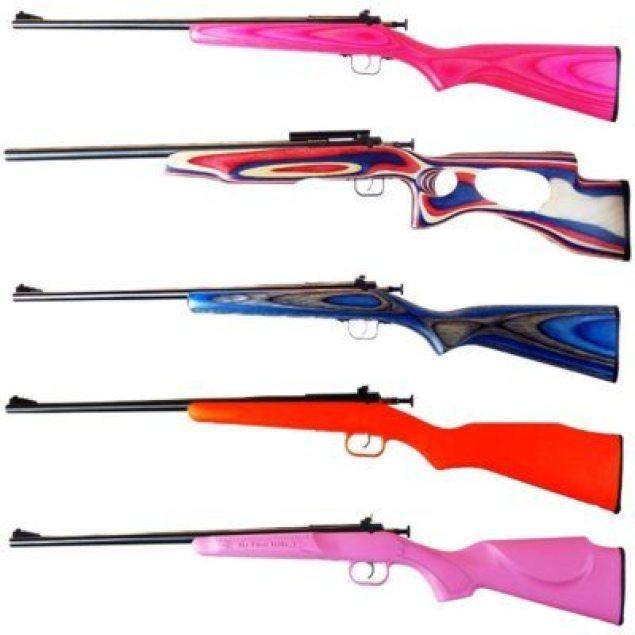 Crickett Guns