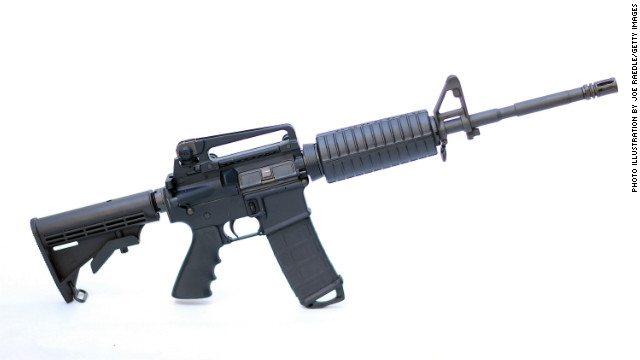 gun data