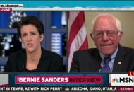 maddow and sanders