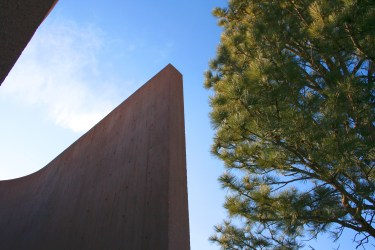 NCAR in the pines