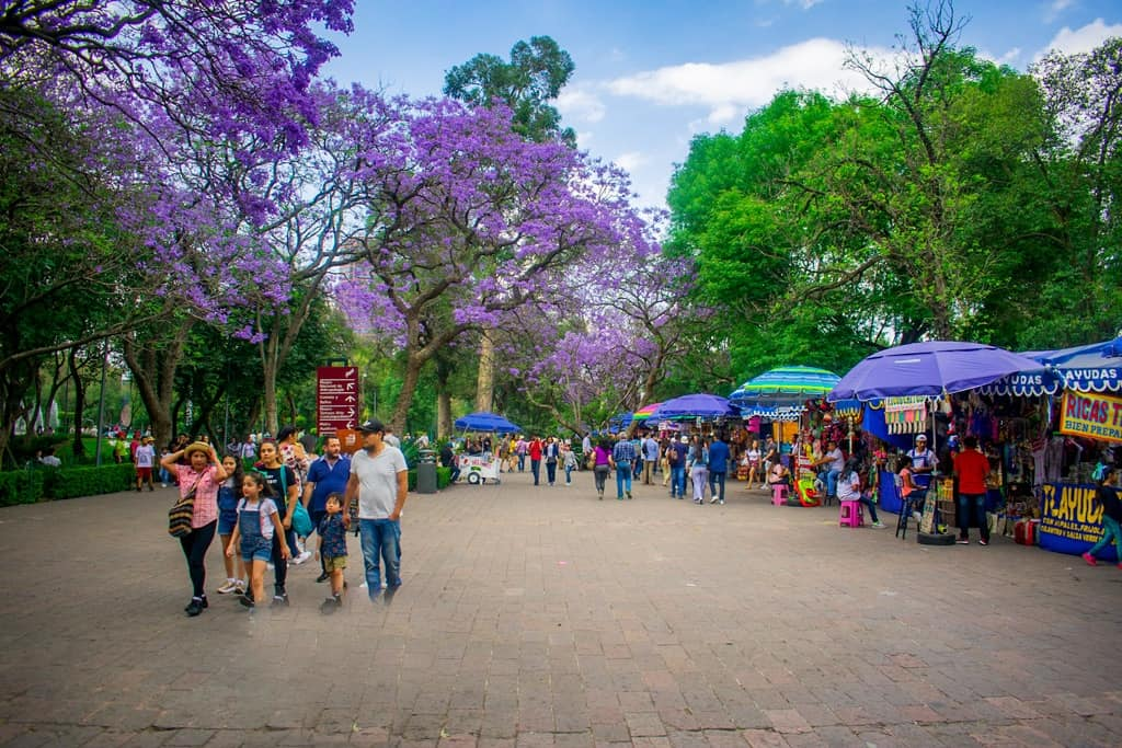 Mexico Travel: Backpacking Mexico in 2020 (Photos)