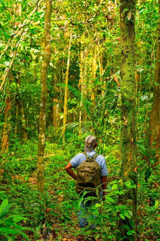 Leticia, Colombia Jungle Tour