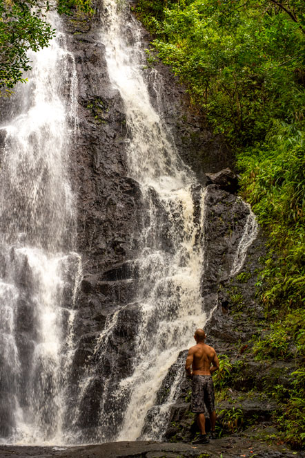 Ka'au Crater Hike WAterfall