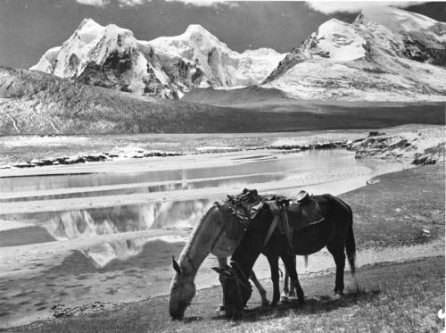 Тибетская экспедиция. Фотоматериалы