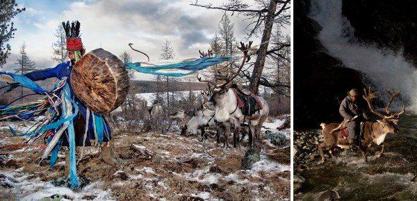 свойство грибов шаманы Сибири