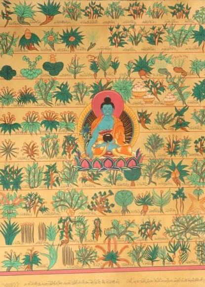 Тибетская медицина лечение. Рецепты