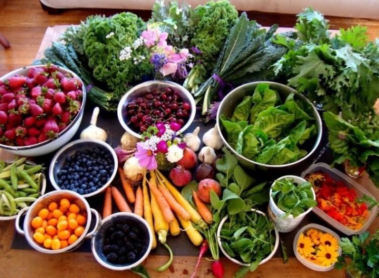 Аюрведа питание по дошам. Определить полезные продукты