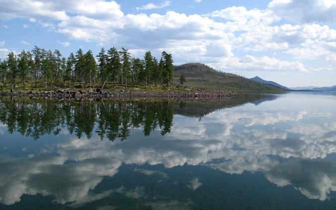 Якутия - Озеро Лабынкыр. Неизвестное животное