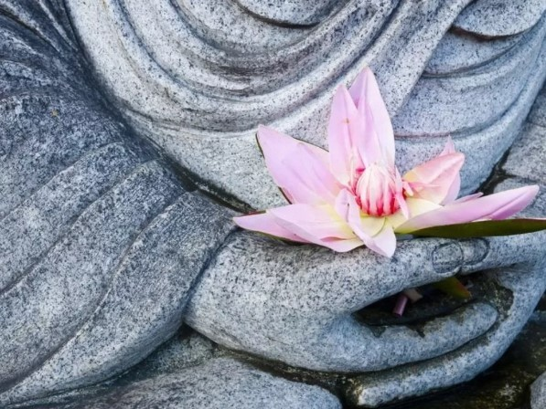 медитация на цвета