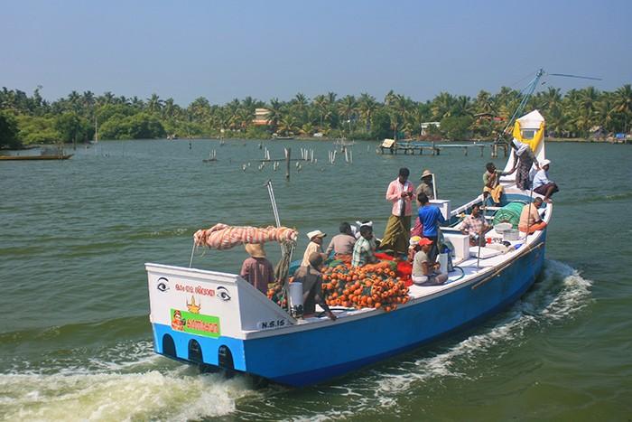рыбаки каналы Кералы