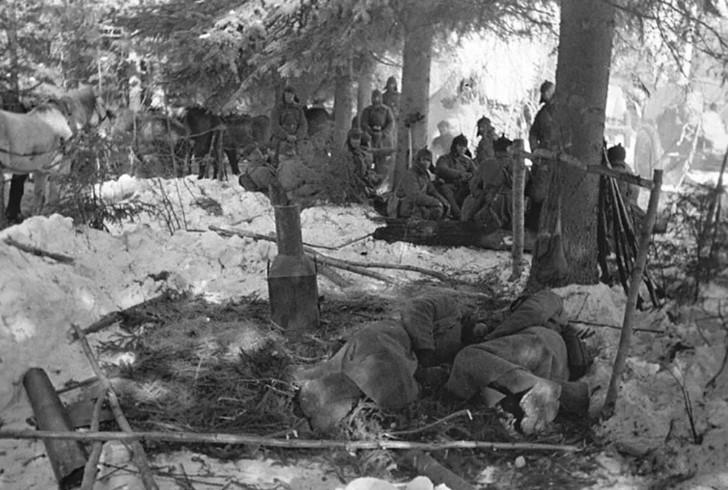 война 1939 года жертвы