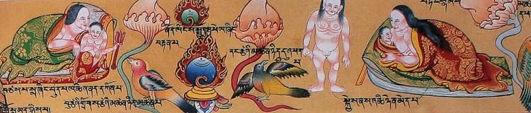 Тибетские лекарства и их компоненты