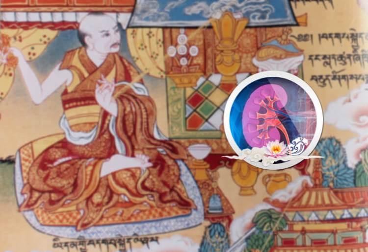 Тибетская Медицина Лечение Почек. Питание, Препараты, Рецепты