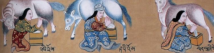молоко в тибетской медицине