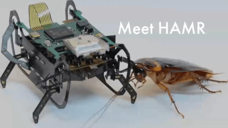 Маленькие Боевые Роботы. Применение в диверсионных целях
