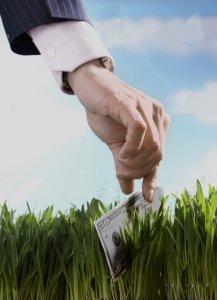 businessman-picking-up-50-dollar-bill-from-grass (1)
