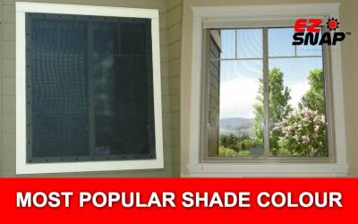 Most Popular Window Shade Colour