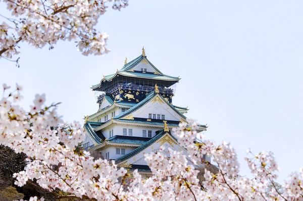 桜と春の大阪城Fotolia_83231732_Subscription_Monthly_M