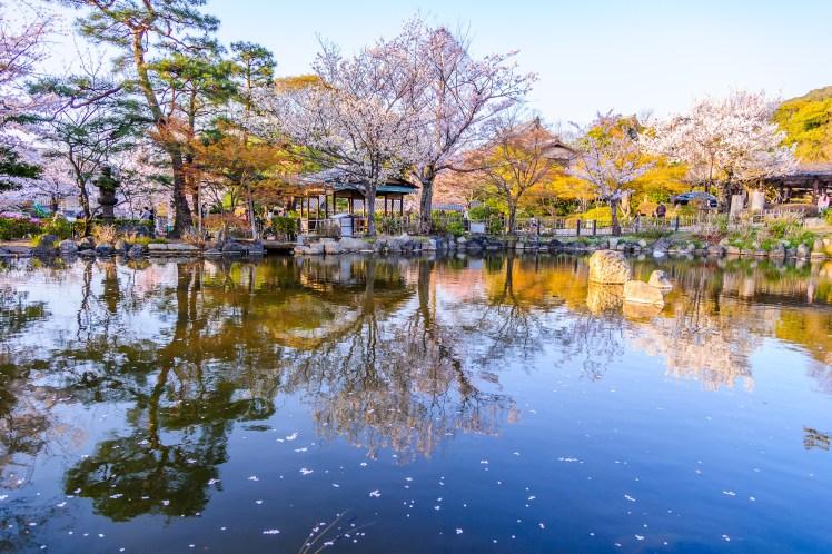 京都圓山公園.jpg