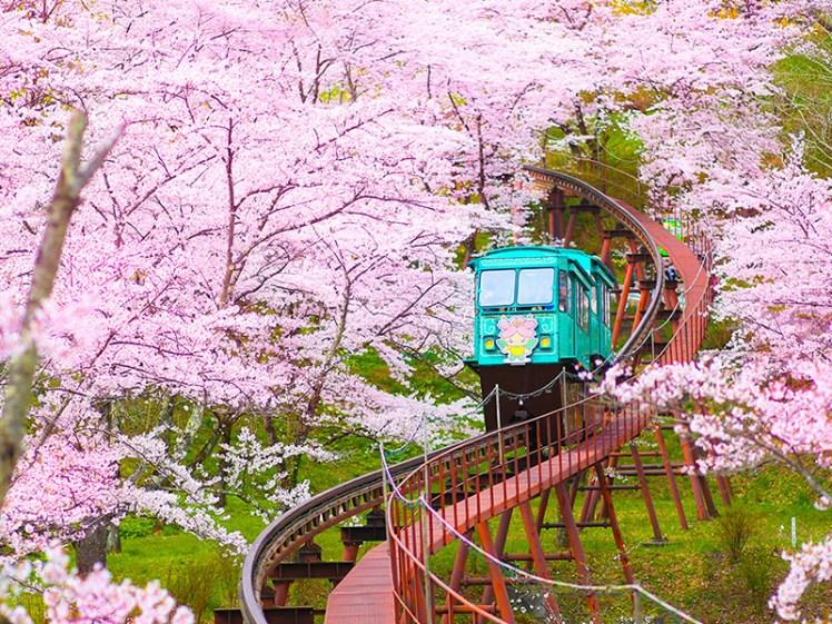 04【易遊網】船岡城址公園