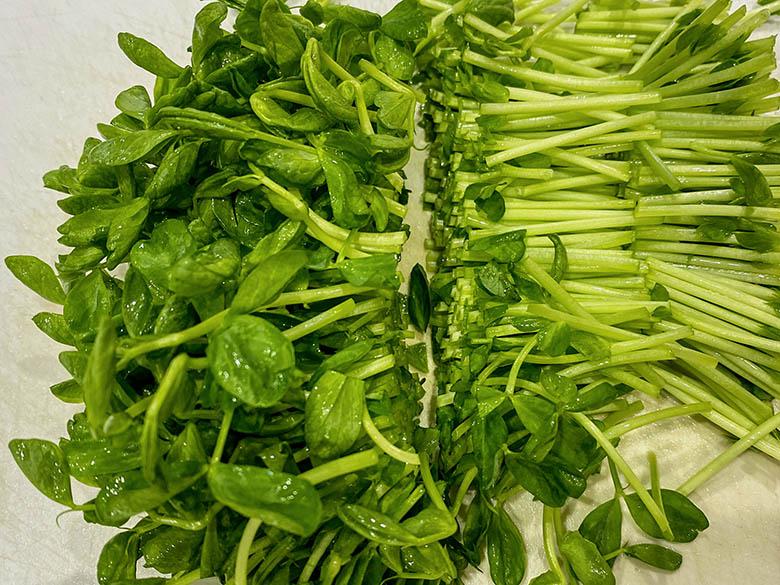 豆苗は根元を切り落とし、3センチ幅に切る