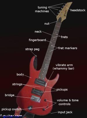 Electric Guitar Parts Diagram, String, Finger Numbering