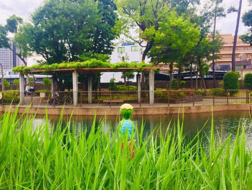 深川の親水公園