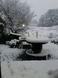 2016.1.19雪景色