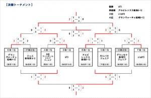 新潟県HondaCars杯第29回新潟県U-11サッカー大会大会結果