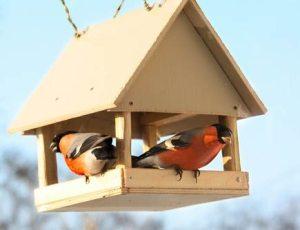 Кормушка для птичек своими руками из фанеры