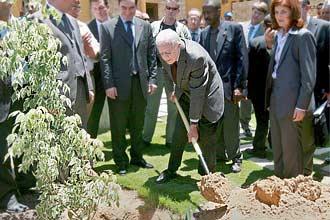 O ex-presidente americano Jimmy Carter planta uma árvore na Cidade de Gaza e diz que palestinos são tratados como animais