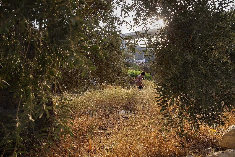 A professora aposentada palestina Umm Judah, 64, que vive diante de um muro de oito metros de altura; barreira a separa da terra que cultivou por décadas