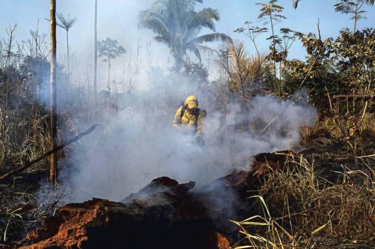 Brigadistas indígenas tentam controlar incêndio criminoso em área de reflorestamento na Floresta Nacional Bom Futuro em Rondônia